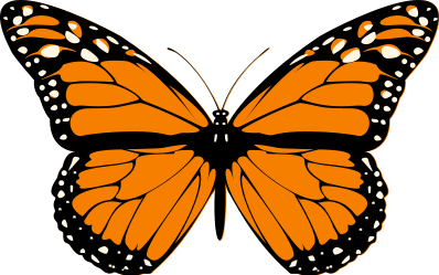 398px-butterflysvg