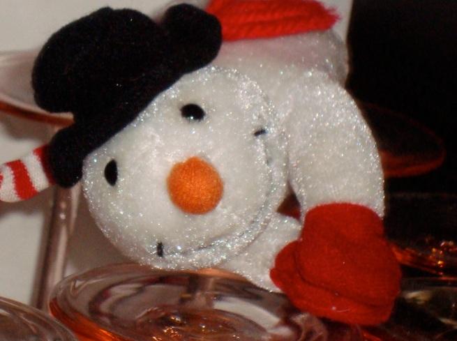 snow-glases